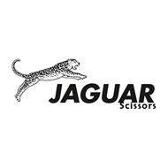 Imagine pentru producător JAGUAR